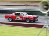 Mustang Fastback at Sandown